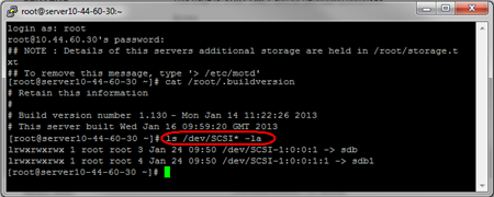 Identifying additional storage drives on a Linux Virtual server
